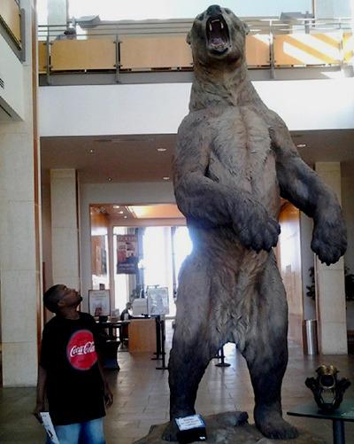 곰.jpg